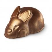 Кролик Уолтер